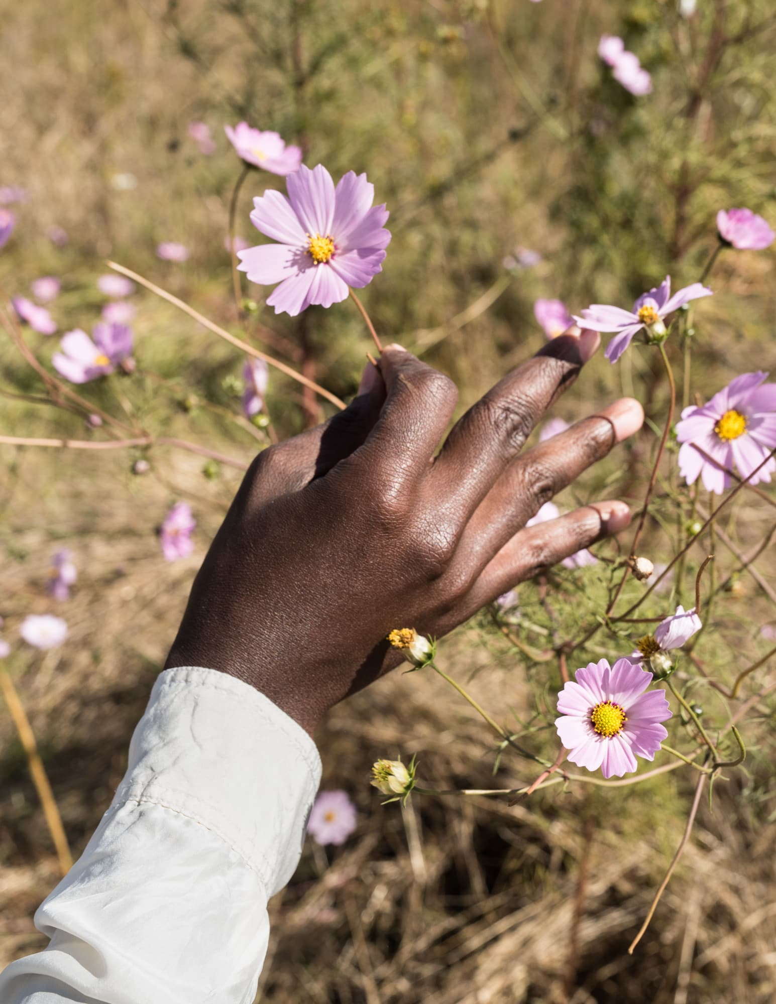 How to get home — Plucking Flowers and the Handsign for Extens